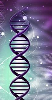 Health DNA Strand
