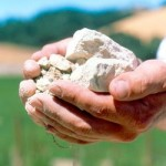 Readmissions 'Drop Like a Rock' with Predictive Modeling